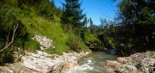 Rezerwat Przyrody Biała Woda w Jaworkach