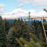 Ścieżka wKoronach Drzew wDolinie Bachledzkiej naSłowacji